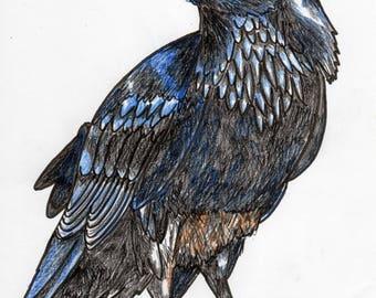 Inktober #5 2017 - Raven [PRINT]