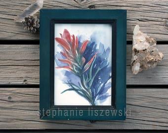 "Desert Indian Paintbrush Flower  - Original Watercolor Painting - 5"" x 7"""