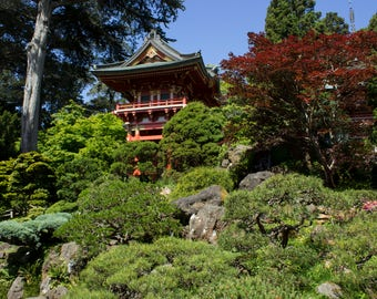 Traditional Japanese Architecture, Tea Gardens, Photography Art Print