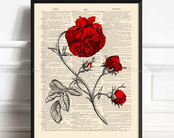 Red Rose Decor, Brother Poster Gift, Romantic Gift, Wedding Favor Poster, Gothic Girl Gift, 1st Anniversary Gift, Gift for Her 40th, 422