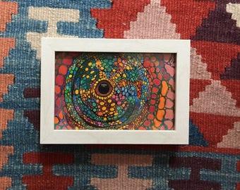 Colored Reptile Eye - Handdrawn Illustration - Colored Pencils