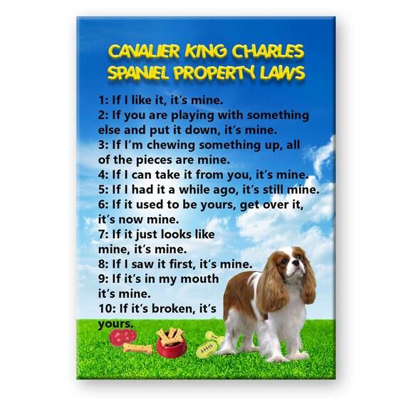 Cavalier King Charles Spaniel Property Laws Fridge Magnet No 2