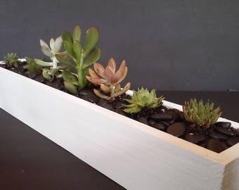 18 inch window sill planter- classic white with succulents