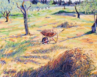 Wheelbarrow in Sardinia