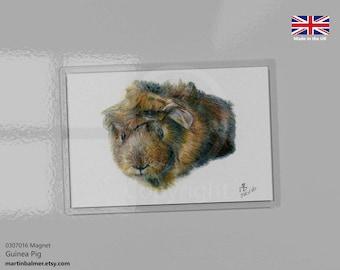 Guinea Pig Fridge Magnet 9.5cm x 6.5cm, print of watercolour pencil drawing, guineapig art, guinea pig magnet