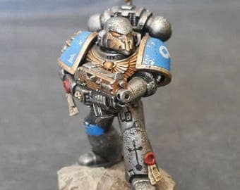 Painted Space Marine #1