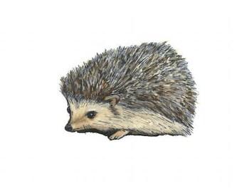 hedgehog watercolor giclée print