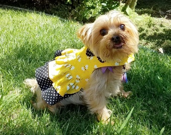 Girl Dog Harness Vest with Scalloped Collar
