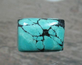 Turquoise Cabochon 14 x 10 mm - Item 75631
