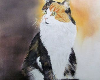 Tricolor cat - black white red