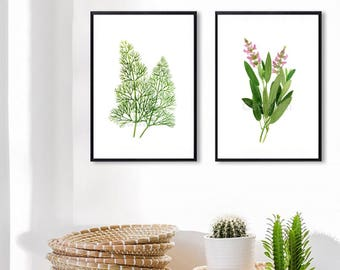 Set of 2 Herb watercolor painting prints. Dill, Sage paintings, Herb botanical prints, green home decor art print, kitchen decor
