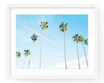Palm Tree Print, Palm Tree Art, Tropical Print, Beach Print, Palm Tree Photo, Tropical Wall Art, Palm Print, Palm Leaf Print, Tropical Art