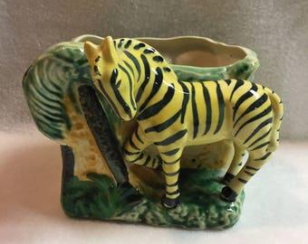 Zebra Garden Planter (#143)