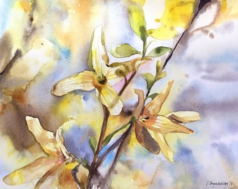 Yellow Forsythia Branch Watercolor Painting Print Hand-signed Limited Edition