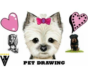 Pencil Pet Portrait, Cartoon, Caricature drawing