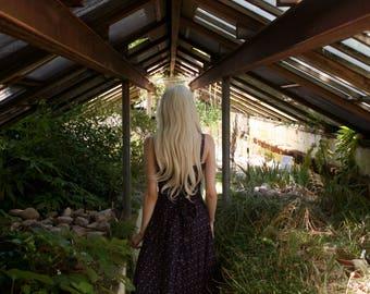 Photography Print: Greenhouse