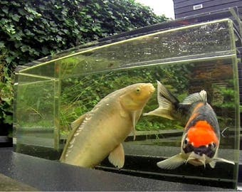 Transparant drijvend vijver aquarium (seekoi-one)