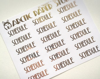 Schedule (CAPS) - FOILED Sampler Event Icons Planner Stickers