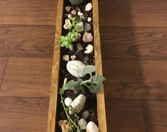 Handcrafted planter box with succulents