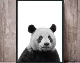 Panda Print, Panda Black and White, Panda Wall Art, Panda Bear Print, Animal Wall Art, Panda Photo, Panda Poster, Printable Panda, Kids Room