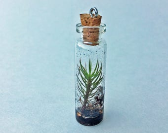 Tiny Terrarium Necklace Juniper Cap Moss 1.5in Cylinder