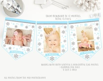 Snowflakes Monthly photo banner, winter onederland first birthday, blue and silver glitter birthday party bunting, instant download