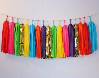 Fiesta Tassel Garland | Fiesta Party Decor, First Fiesta Banner, Mexican Tassels, Taco Party Supplies, Cinco De Mayo, Fiesta Baby Shower