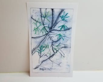 "Fine Art Greeting Card (Pack of 6) - ""Kappock in Bloom"""