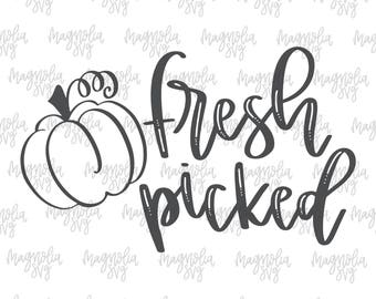 Fresh Picked Pumpkin svg, Pumpkin svg, Baby Onsie svg Cut File, Newborn Outfit svg Cutting File, Going Home Outfit, New Baby Outfit