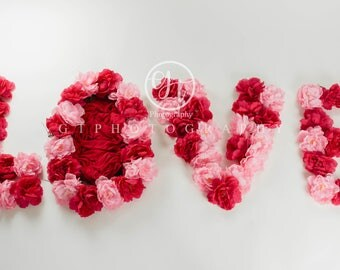 LOVE Digital Backdrop/Valentine Digital Backdrop/Valentine Newborn Digital Backdrop