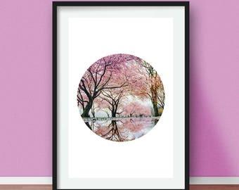 Cherry Blossom Photo, Pink Sakura Print, Sakura By The Water, Spring Nature Photography, Japanese Floral Wall Art, Spring Blossoms Photo