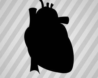 Heart Silhouette - Svg Dxf Eps Silhouette Rld Rdworks Pdf Png Ai Files Digital Cut Vector File Svg File Cricut Laser Cut
