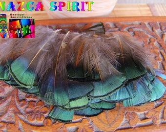 6 feathers back pheasant Lady Armherst color green Iridescent 5 cm to 7 cm