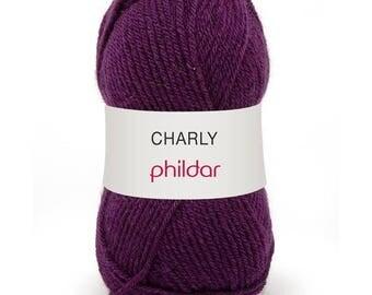 yarn thought PHILDAR CHARLY