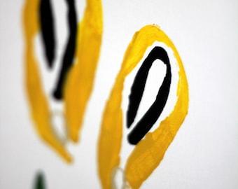 Innuendo Flowers-Daffodilish