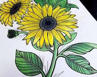 Sunflower Metallic Watercolor