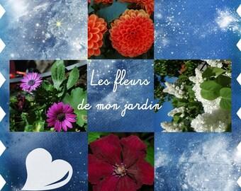 Valentine's Day card from my garden flowers