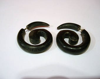 Horn earrings.