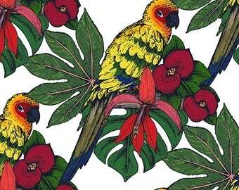 SET of original, plastic, washable and durable TABLE + paper for kids to color - set 1 tropical parrots.