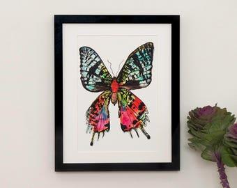 Sunset Moth Illustration Print