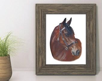 Horse Print, A5 Fine art print, Equine Art, Horse gift, Pony Gift, Joanne Rowland Art