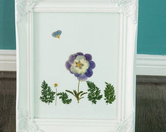 Pansy. Pressed pansy flowers and field leaves, dried flower composition. Wall decor. Home decor. Flower picture.