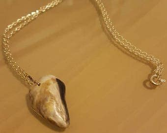 Fake Shark Tooth Necklace