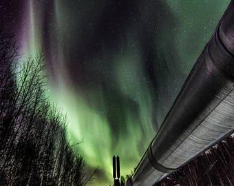 Alaska Pipeline Fairbanks