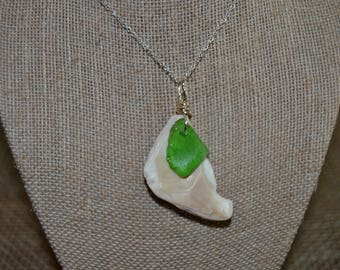 Green Sea Glass on Shell