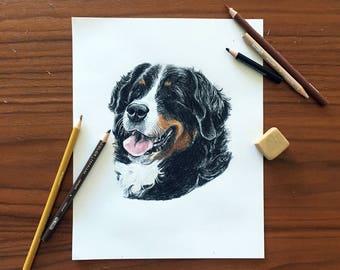 Custom Pet Portrait Hand-Drawn Gift