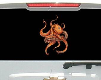 Orange Octopus Sea Creature