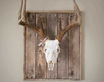 Weathered Wood Skull Plaque