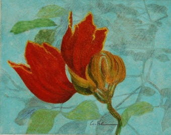African Tulip Tree Blossom / mixed media / monoprint / matted