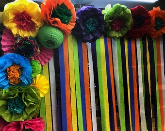 Mexican Tissue Paper Flowers Photo Wall Wedding Fiesta Decorations - Set of 10 with Streamers